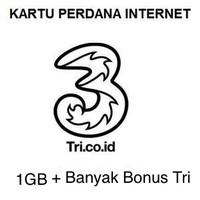 harga Kartu Perdana Tri/three 3 Aon Internet 1gb Reguler Tokopedia.com