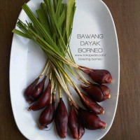 Jual Bawang Dayak/Bawang Berlian/Bawang Sabrang/Bawang Arab/Bawang Tiwai Murah