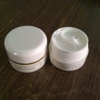 Night Cream Syahrini 15gr [krim malam] 020517
