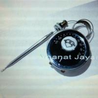 thermostat EGO 110