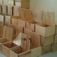 Box Jam | Kotak Kayu Jati Belanda