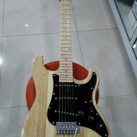 harga Gitar Listrik / Elektrik Fender Stratocaster Custom Tokopedia.com