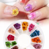 dried flower wheel nail art hiasan kuku bunga kering dry flower color