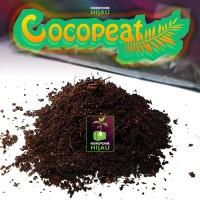 Cocopeat / coco peat media tanam