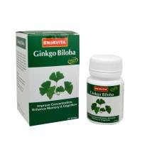 harga Ginkgo Biloba, Vitamin Daya Ingat, Konsentrasi 30 Tablet Tokopedia.com