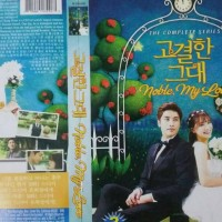 drama korea noble my love