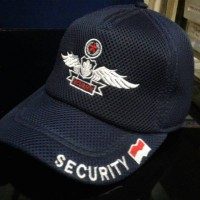 topi security