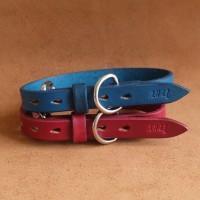 Jual Kalung Anjing Kulit Asli Leather Dog Collar Warna Blue Tosca Size M Murah