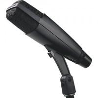 Sennheiser MD421 MKII U4 Microphone