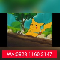 Jual Jual Dvd Anime Pokemon Season 1-14 dan Movie LENGKAP Murah