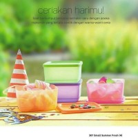Small Summer Fresh Fun Tupperware