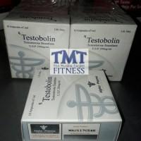 Testobolin Testo Bolin Alpha Pharma AlphaPharma Testosterone Enanthate