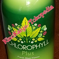 Synergy- Chlorophyll- Klorofil Plus isi 730ml - Alfalfa Mint