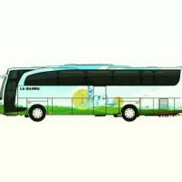 La bamba Travel, menyewakan bis pariwisata seat 19,29,31,48 dan 59