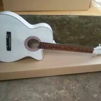 Gitar akustik fender + softcase/tas