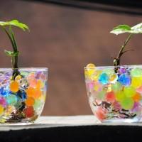 Jual Hidrogel Rainbow hydrogel mix clay soil gram pelangi berkebun tanaman Murah