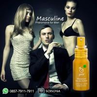 Jual Parfum Pria Pemikat Lawan Jenis (Masculine Gold) Murah