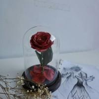 Jual Enchanted Rose / Mawar Beauty and The Beast / Bunga Handmade Clay Art Murah