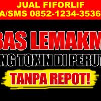 Jual FIFORLIF BANDUNG parcel pelangsing detox herbal jus buah untuk lebaran Murah