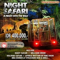 Voucher Tiket Bali Night Safari (Anak)
