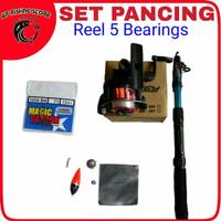 Set Pancing Reel 5 Bearings