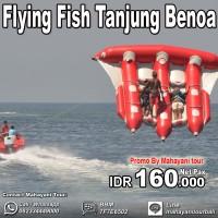Voucher Tiket Flying Fish Watersport Benoa Bali