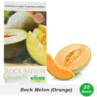 Jual Benih/Bibit Rock Melon (Maica Leaf) Murah