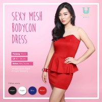 Jual KP3811 Sexy Mesh Bodycon Party Dress DS788 KODE TYR3867 Murah