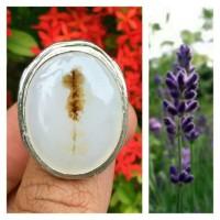 Jual Dendrite Kristal motif setangkai bunga Murah