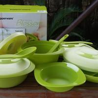 Jual Tupperware Smart Kitchen  Petite Blossom set wadah penyajian makanan Murah