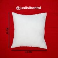 Jual 1set/5pcs ISI BANTAL SOFA SILIKON 40x40cm Murah