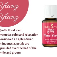 Young Living Essential Oil - Ylang Ylang 15ml