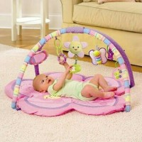 Pretty in Pink Play Gym playmat