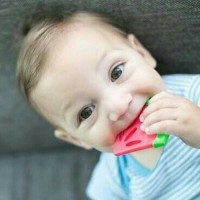 Gigitan bayi Dr Brown / Dr Browns coolees soothing teether