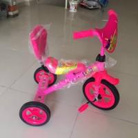 Sepeda Exotic Anak Tiga Roda Termurah