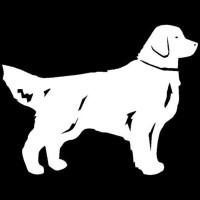 STIKER ANJING MOBIL DOG, GOLDEN RETREIVER, SAMOYED, CORGIE, STICKER