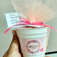 Jual Souvenir Pernikahan Benih / Bibit Tanaman Paket Pot Mini Murah