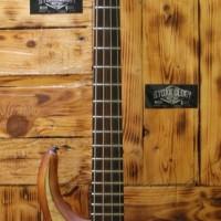 Gitar Bass Mtd Kz 4 Original Bartollini MK I Active Pick Up
