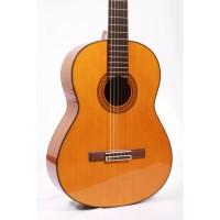 Gitar Yamaha Original YAMAHA C80 C-80 C 80 free softcase