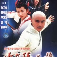 DVD Film Silat Mandarin Taichi Prodigy / Taiji Prodigy
