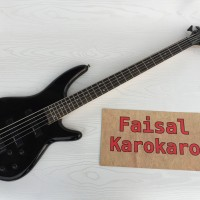Gitar Bass SDGR 5 String