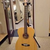 Acoustic Electric Guitar Tanglewood TWRO E Roadster