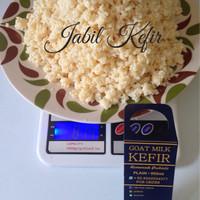 harga Bibit Kefir / Kefir Grains / Grains Kefir / Biji Kefir / Jamur Kefir Tokopedia.com