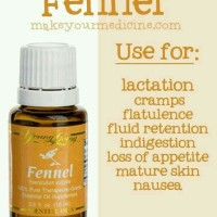 Fennel Young Living - 15 ml