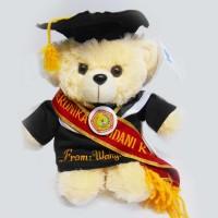 Jual Boneka wisuda Puffy Bear Bordir Baju dan Selendang Murah