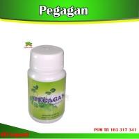 Obat Herbal Kapsul Pegagan -Herbal Insani-