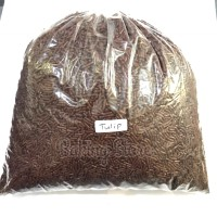 Mesis Coklat Tulip Kiloan 250gr