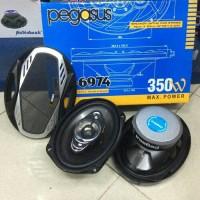 Speaker oval Pegasus PG 6974 mantap