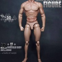 zc toys body 1/6 like ttm 19