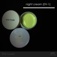 Night Cream 1 / Krim Malam 1 Eva Mulia